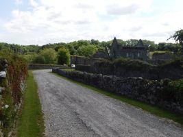 Ireland044