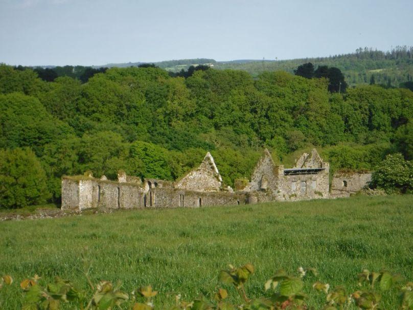 Ireland089