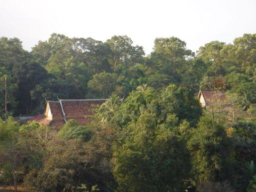 01.24.2016_AngkorWatJPG084