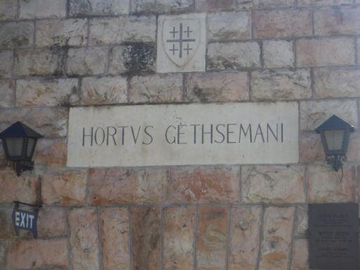 03.07.2016_Gethsemane002