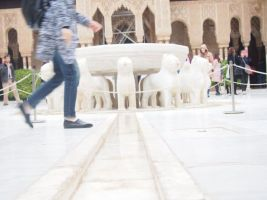 04.12.2016_AlhambraNikki027