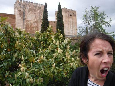 Spain_Patrick146