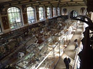 PG.Paris.Natural History Museum009