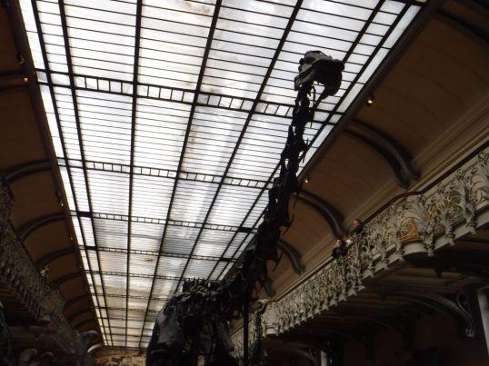 PG.Paris.Natural History Museum012