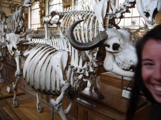 PG.Paris.Natural History Museum028