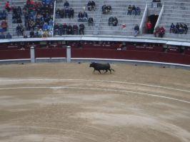 Spain_Patrick013